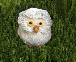 白 フクロウ 意味 象徴